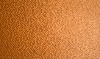 Pomerančová kůže