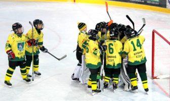 Děti hrají hokej